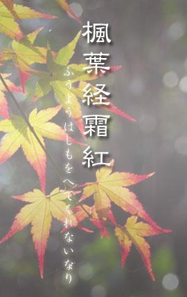 楓葉経霜紅